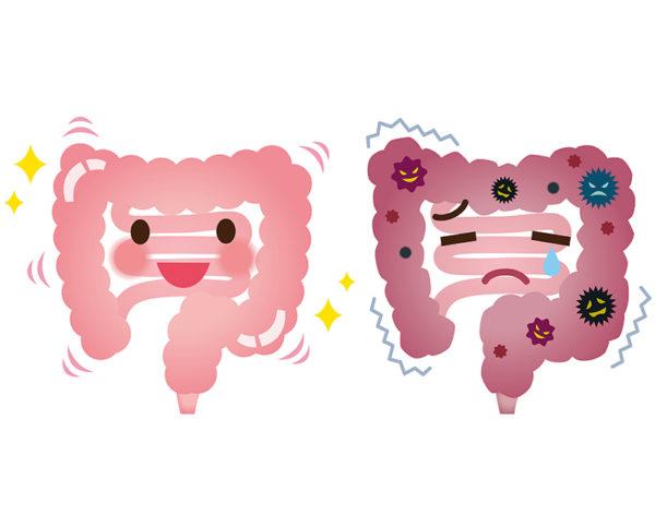 布施 公予(胃腸 良子)のイメージ