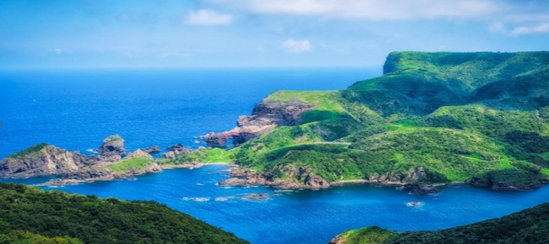 西ノ島のツルアラメを選ぶ理由のイメージ
